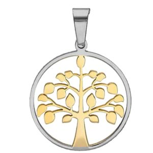 Two-tone-Gold-and-Silver-Round-Tree-of-Life-Pendant-with-Frame-26-MM-1-Inch-Stainless-Steel-B00OVFZU0A